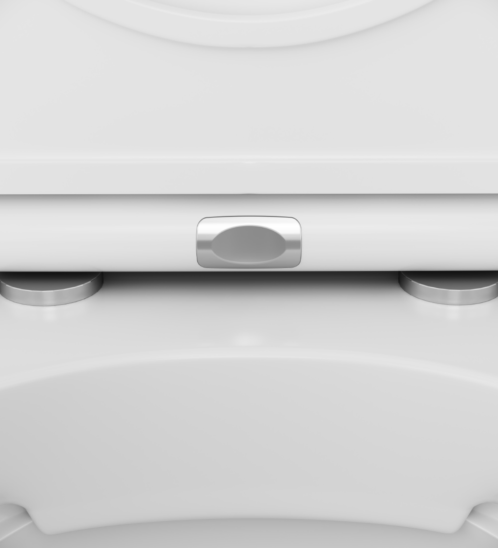 C501700WH Wall-hung rimless WC FlashClean